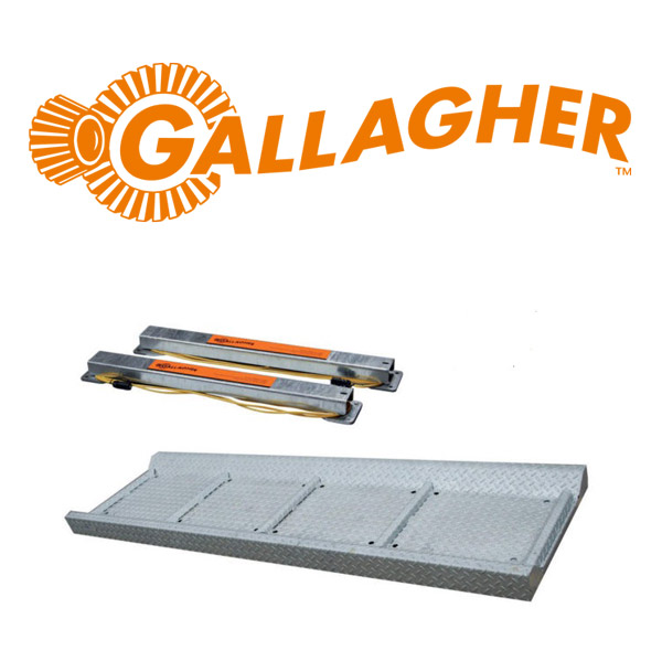 Weigh Platform C/W Load Bars