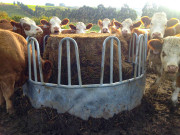 Tombstone-Round-Hay-feeder
