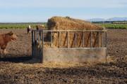 Sheeted-rectangular-hay-feeder