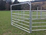 6-rail-gates-hurdle-frames-1